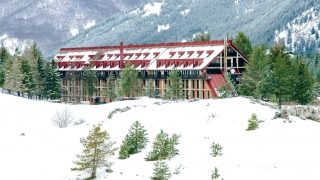 Hotel Club Primula
